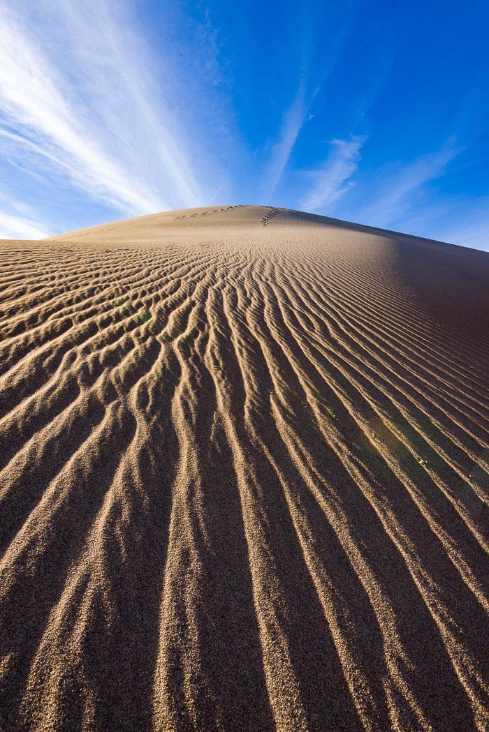 Mesquite-Sand-Dunes-3971_v1.jpg