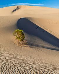 Death-Valley-8564-Edit.jpg