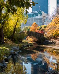 Central_Park_v1.jpg